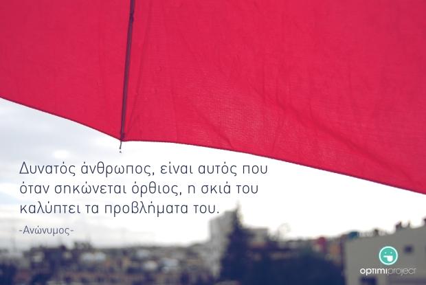 Optimi Project | 2012