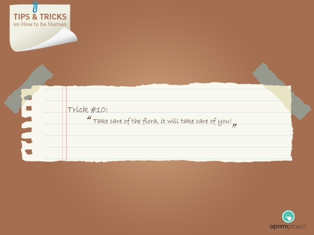 Tips and tricks #10 Optimi Project | 2013