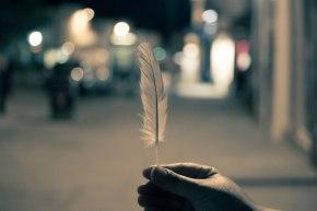 wpid-feather.jpg